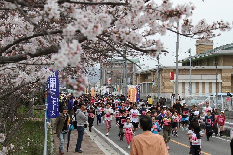 桜の下を走るランナーたち
