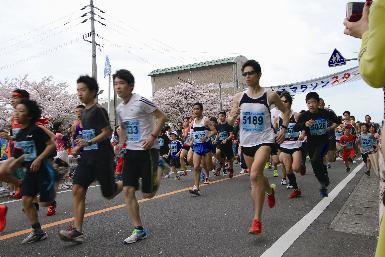 多くの参加者が春の桜街道を駆け抜けます